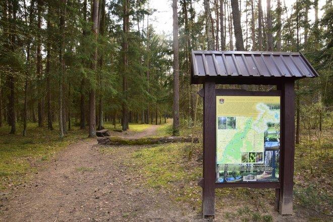 The Cognitive Path of Šventoji